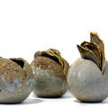 David Clifton art - Seed pod trio